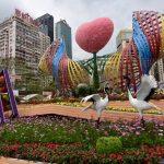 「香港花卉展覽(花展)」3月16日から26日まで開催