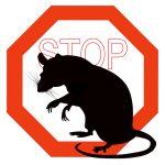 ネズミ撲滅作戦 香港全域で展開