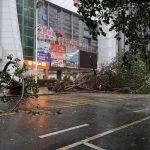 台風暴雨の業務条例、改定か シグナル8発令の出勤問題
