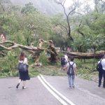 台風・暴雨時の就業規則修訂 新たに「極端状況」の発令へ
