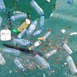 海のペットボトルゴミ問題 砂浜清掃で1万本以上回収