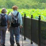 高齢者増加と少子化の問題 労工福利局長が日本を視察
