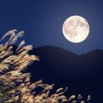 中秋の名月見ごろ 13日前後が最大に